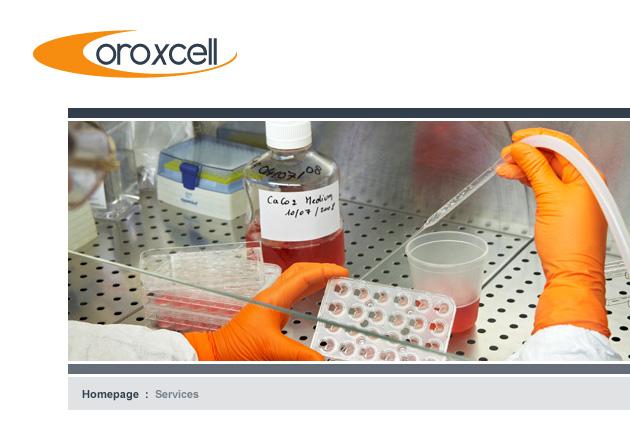 Réalisation site recherche biotechnologies