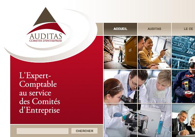 Conception site web Audit et de Conseil